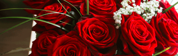 15 unique ideas: what to do on valentine's day! – style dr., Ideas